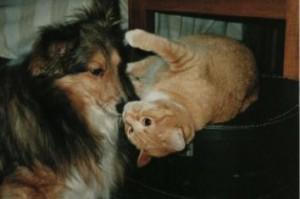 Tiffy and Jasmine