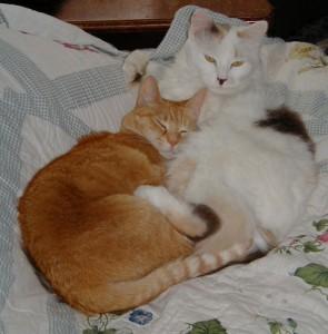 Jasmine and Kacey